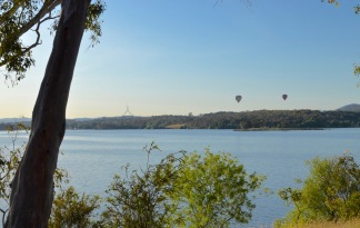 Balloons over Lake Burley Griffin. Parliament in the distance.