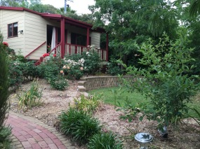 Our little home in Chapman, Canberra